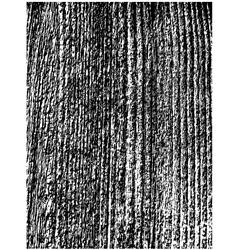 Rough wooden texture vector