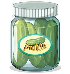 Pickle vector
