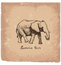 art elephant vector image vector image