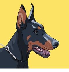 Dog doberman pinscher vector
