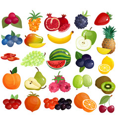fruits berries colorful icons collection vector image vector image