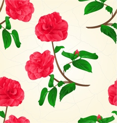 Seamless texture camellia japonica flowers vector