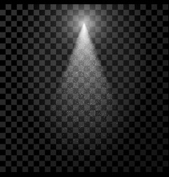 White transparent spotlight with particles vector