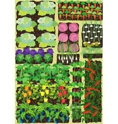 Kitchen garden vector
