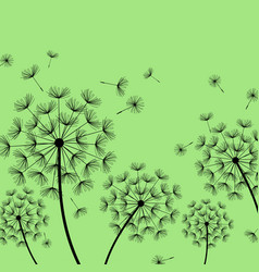 green background with stylized black dandelion vector image vector image