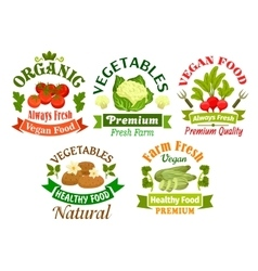 Organic vegan food emblems vegetarian vegetables vector