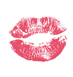 print of pink lips on white vector image