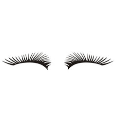Black eyelashes icon on a white background vector
