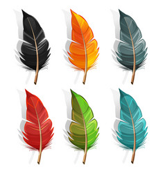 bird feather set vector image
