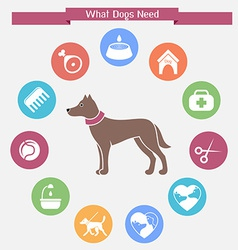 Dog infographics and icon set vector