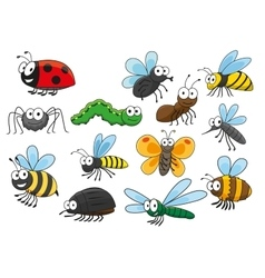 Colorful cartoon smiling insects characters vector