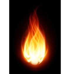 Burning flame fire background vector