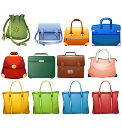Different design of handbags vector image vector image