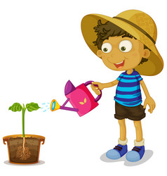 Boy watering plant on white background vector