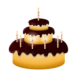 Celebratory chocolate cake with burning candles vector image vector image