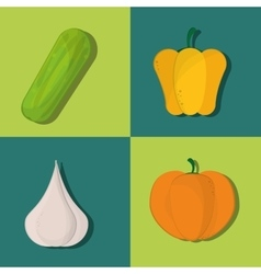 healthy food ingredients icons image vector image