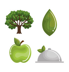 natural and organic set icons vector image