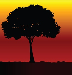 Tree black silhouette vector