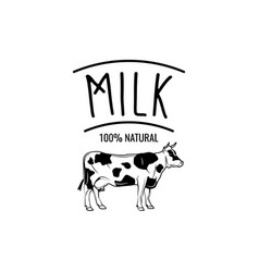 cow milk badge label isolated on white vector image