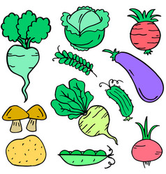fresh vegetable set doodle collection vector image