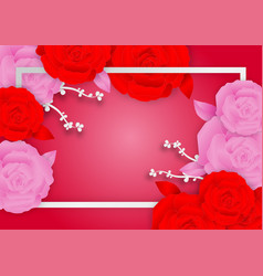 Rose flowers and frame on pink background with vector