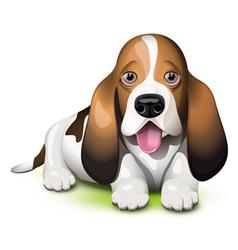 Basset hound puppy vector
