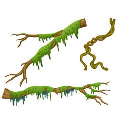 Wooden sticks with green moss vector