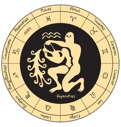 Aquarius with the signs of the zodiac vector image