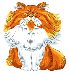 Cute red fluffy persian cat vector