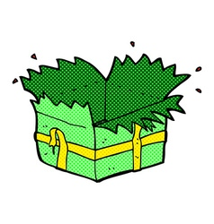 comic cartoon open present vector image