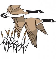 geese in flight vector image vector image