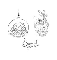 glass terrariums with succulents set vector image