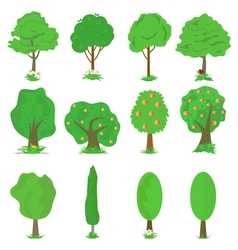 collection of green trees isolates vector image