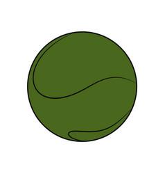 Sport tennis ball vector