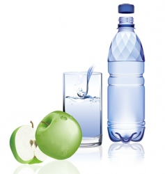 Water bottle and apple vector