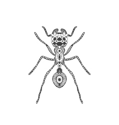 Zentangle stylized ant vector