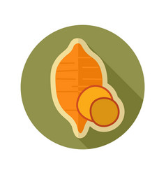 Sweet potato flat icon batata vegetable vector