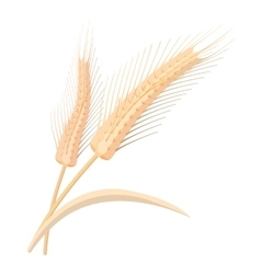 Two stalks of ripe barley cartoon icon vector