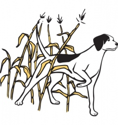 Hunting dog in field vector