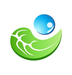 leaf with water drop symbol vector image