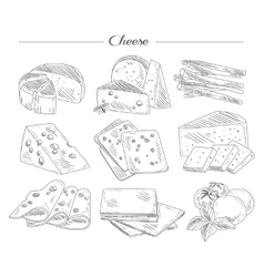 Types of Cheese Handdrawn Set vector image
