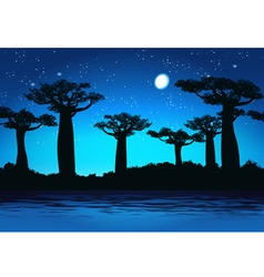 Baobabs at night vector