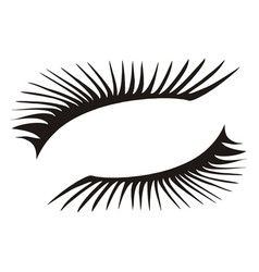 black eyelashes icon on a white background vector image vector image