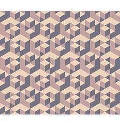 Cubes pattern vector image