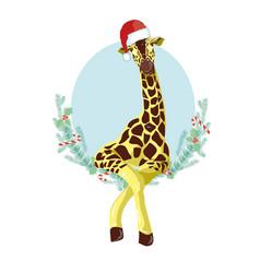 giraffe head with santa claus hat graphic vector image