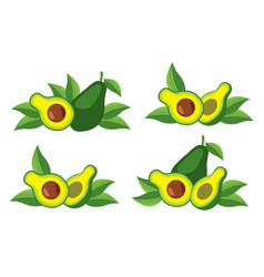 icon of the avocado vector image vector image
