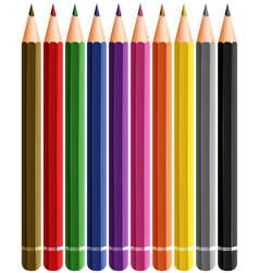 set of color pencils with many colors vector image
