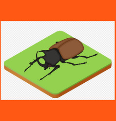 Beetle eps vector