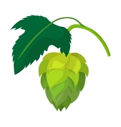Branch of hops cartoon icon vector