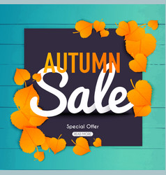 Autumn sale banner with autumn leaf poster vector